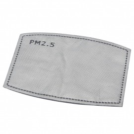 PM2.5 Replaceable Carbon Filter - Small